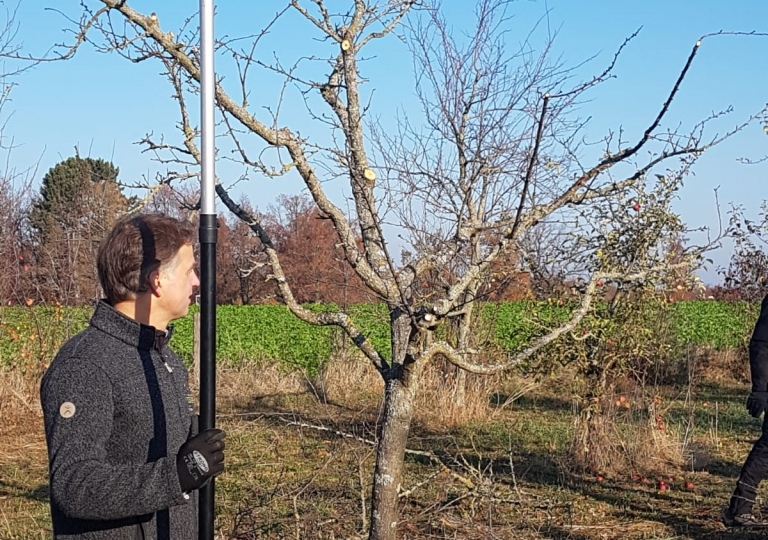 Obstbaumschnittkurs 2018